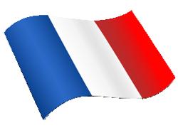francia fordítás, szakfordítás